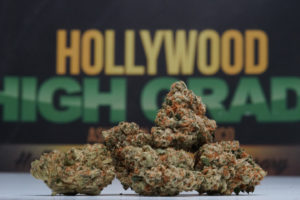 Hollywood High Grade About Us